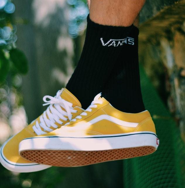 chaussure de skate vans